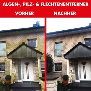Algen-, Pilz & Flechtenentferner 2x 1000 ml + 1,8Liter Drucksprüher