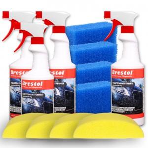 INSEKTENENTFERNER SET2 - 4x 750 ml gebrauchsfertig + Zubehör